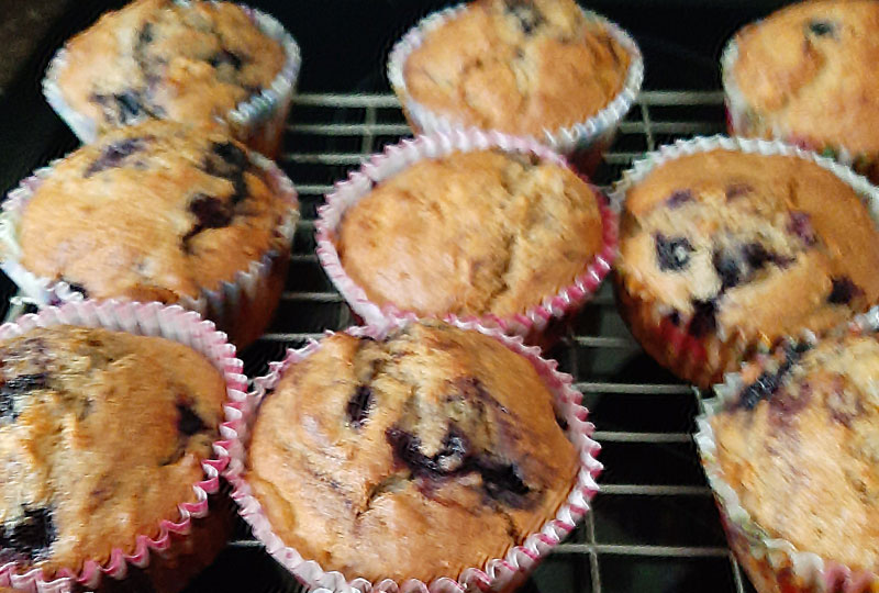 Blueberry Muffins Upper Glanmire ICA