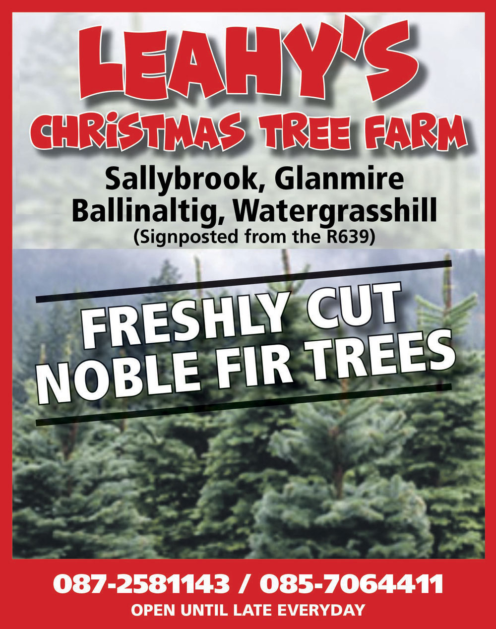 Leahy's Christmas Tree Farm December 2020